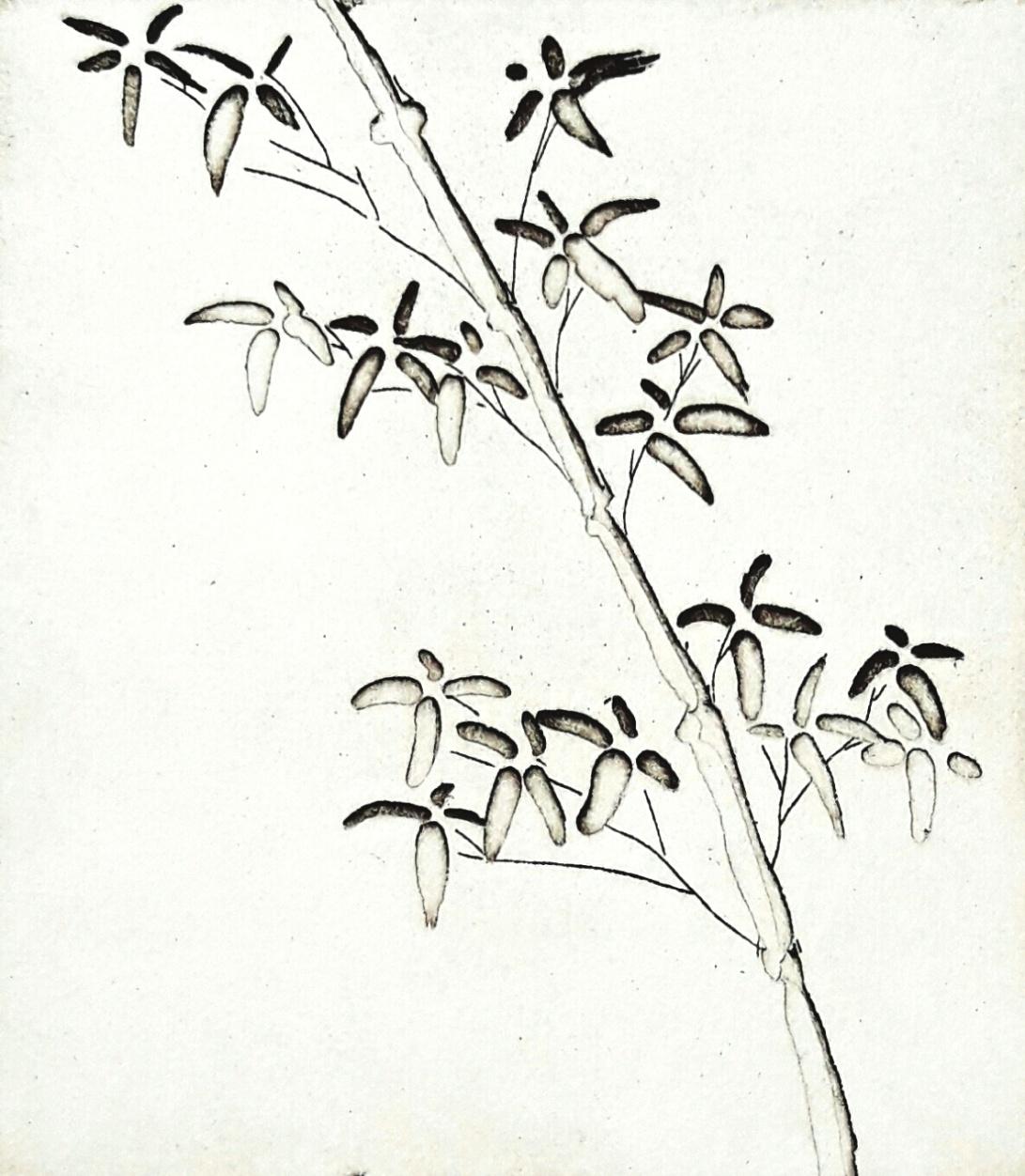 genevieve guadalupe bamboo intaglio