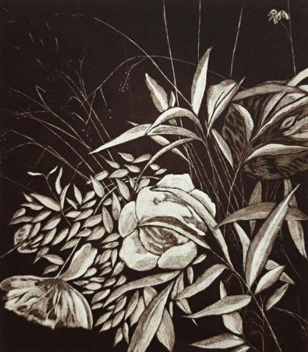 genevieve guadalupe le jardin de majo mezzotint