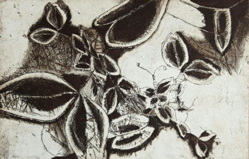 genevieve guadalupe plantule etching