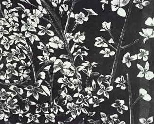 genevieve guadalupe blossoms lithograph 27x34cm 2017