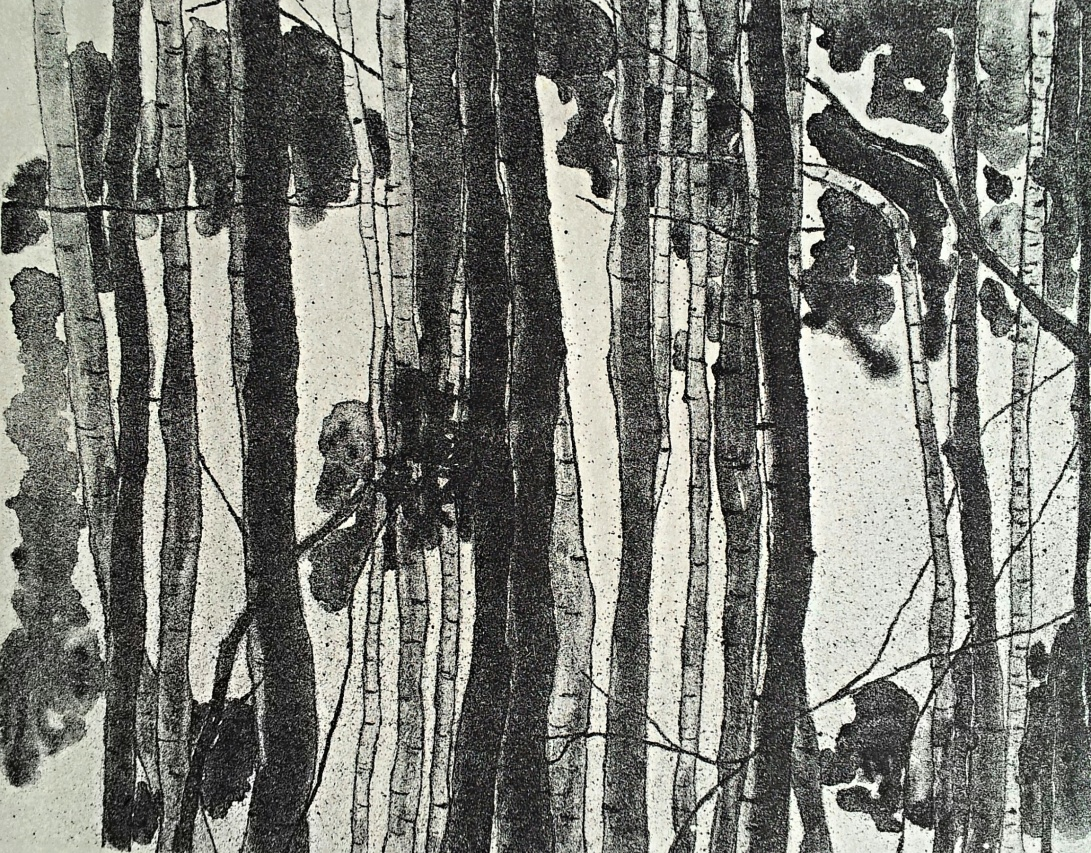 genevieve guadalupe. woods. lithograph. 2017. 9.5x13.5''. 24x34cm
