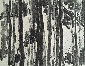 genevieve guadalupe woods lithograph 24x34cm 2017