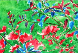 genevieve guadalupe blooms watercolor 11,5x18cm