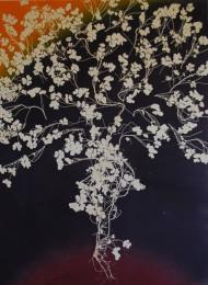 genevieve guadalupe botanica 6 monoprint 75x55cm 2018