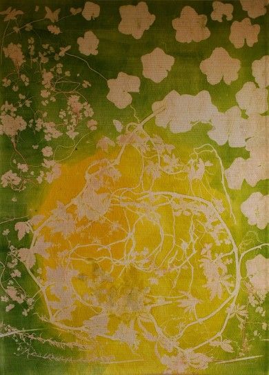 genevieve guadalupe botanical1 monoprint on fabric quilted 122x87,5cm2108