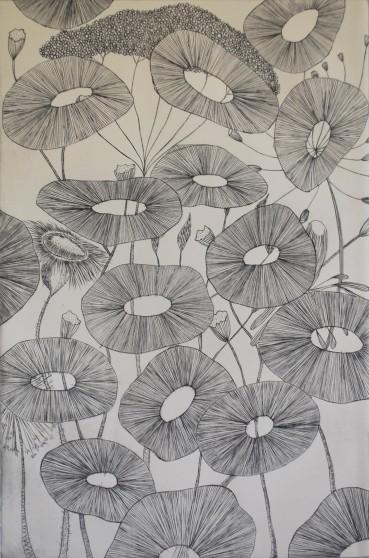 genevieve guadalupe fera flores engraving black 60x40cm 2019