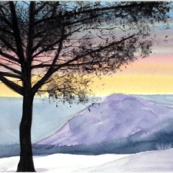 genevieve guadalupe pinetop watercolor 15x255cm