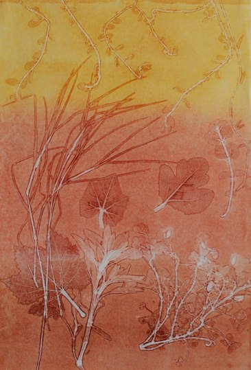 genevieve guadalupe botanica 11 ghost monoprint 50x35cm 2020