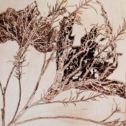genevieve guadalupe folium interitus dry point 13.5x12 34x305cm 2020