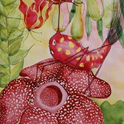 """genevieve guadalupe panfilo watercolor 23.5x17.5"""" 60x445cm 2021"""